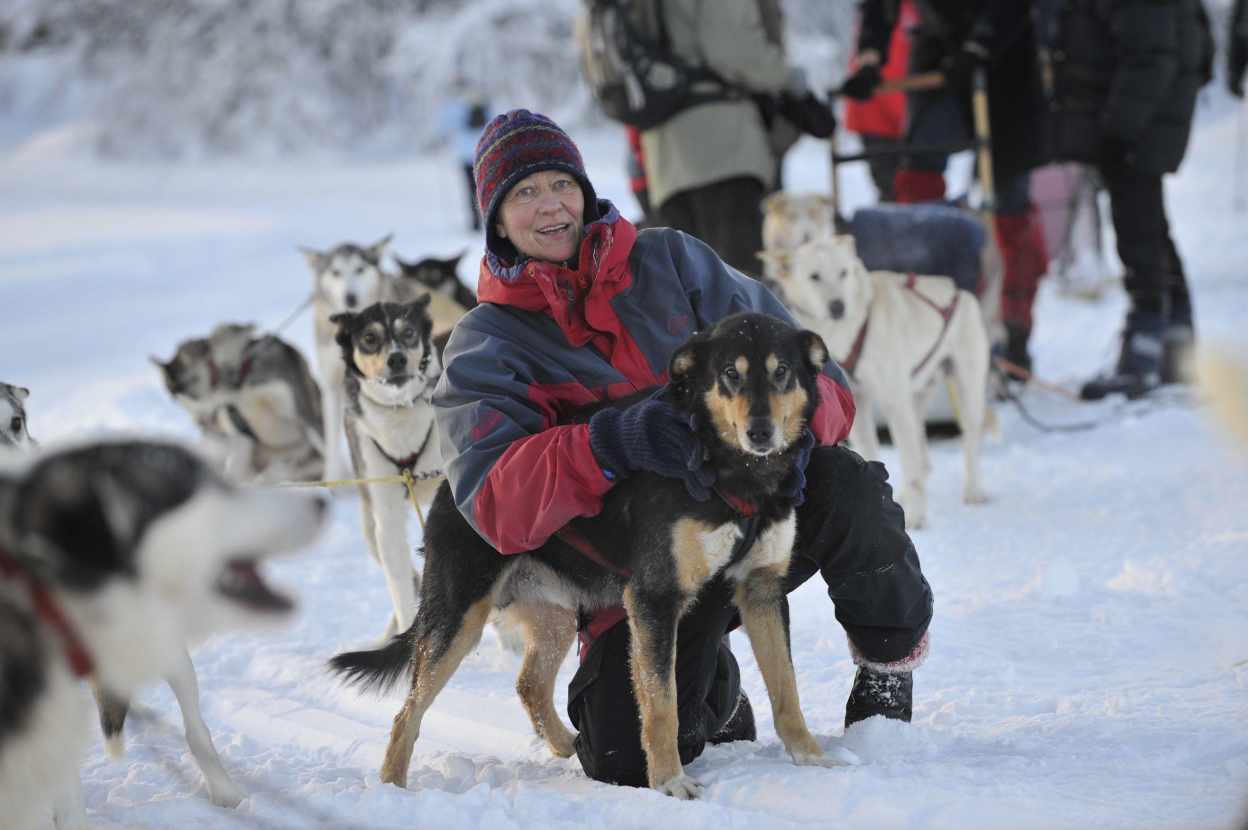 Hundeslede hos Venabu Fjellhotell, Venabygdsfjellet. Foto: Olav Storm
