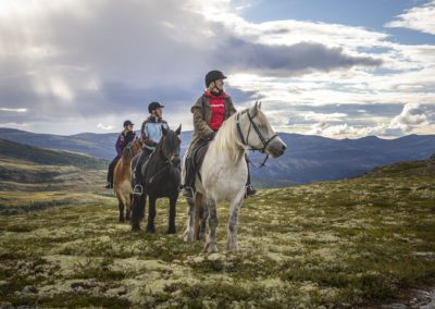 Horses and riders in the mountains, Norway