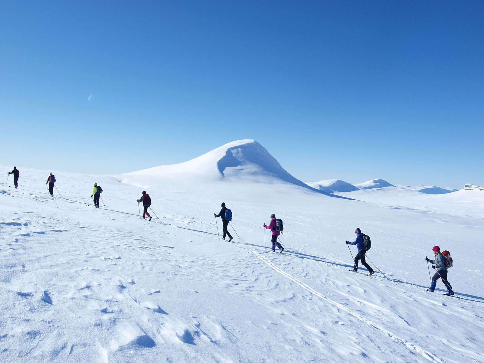 A group of eight skiers ski uphill in the mountains